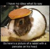 Humor krabbels